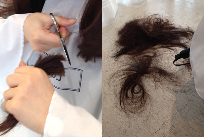 切り落とされた髪の毛