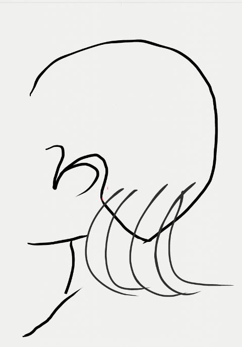 後頭部の髪の毛の流れ