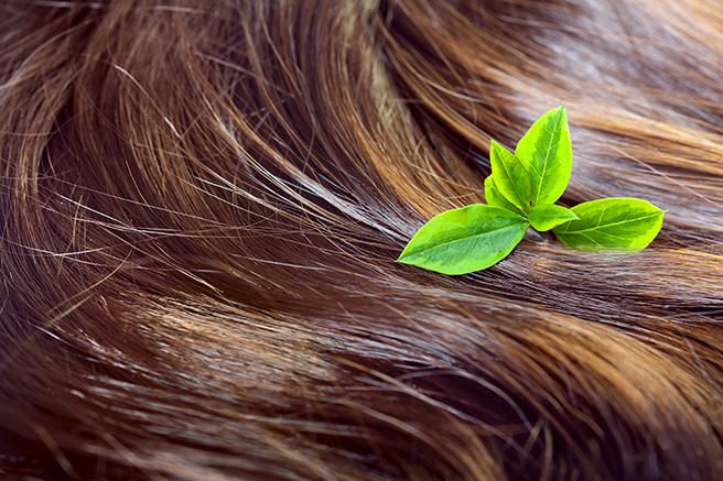 健康的な髪