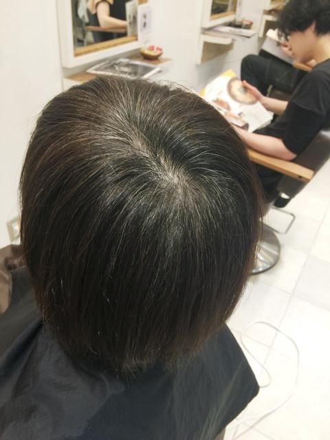 レイコさんの白髪の割合