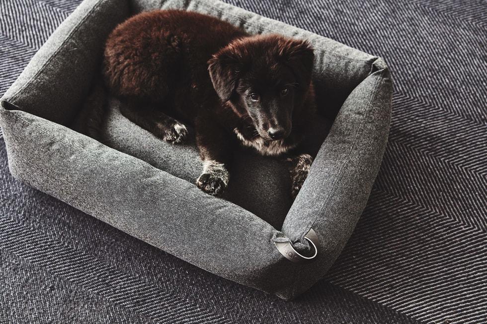 モフモフ 北欧デザイン ペット用品セレクトショップ 犬用ベッド