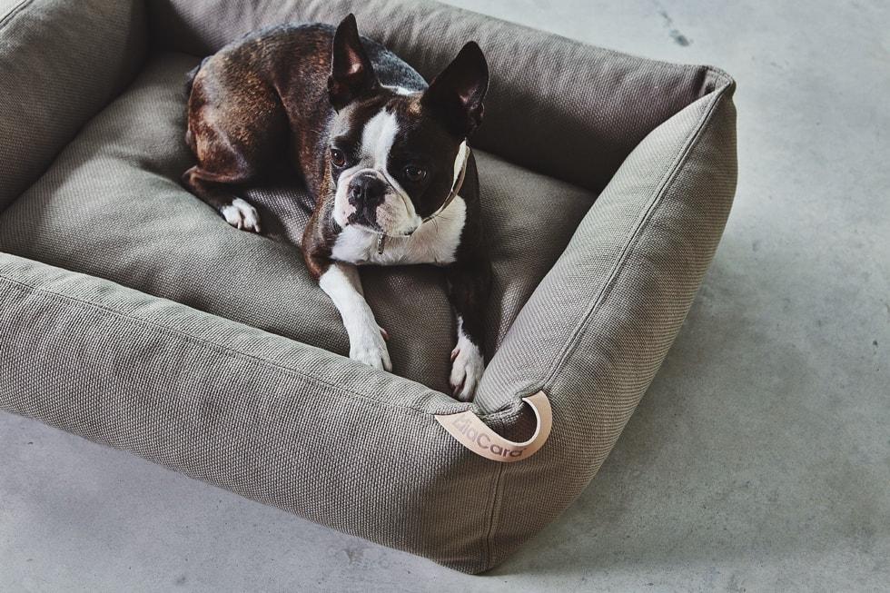 モフモフ 北欧デザイン 犬ベッド