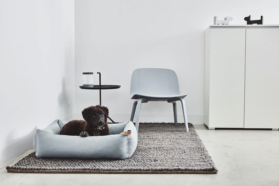 北欧デザインのペット用品ショップ「mof -mof (モフモフ)」